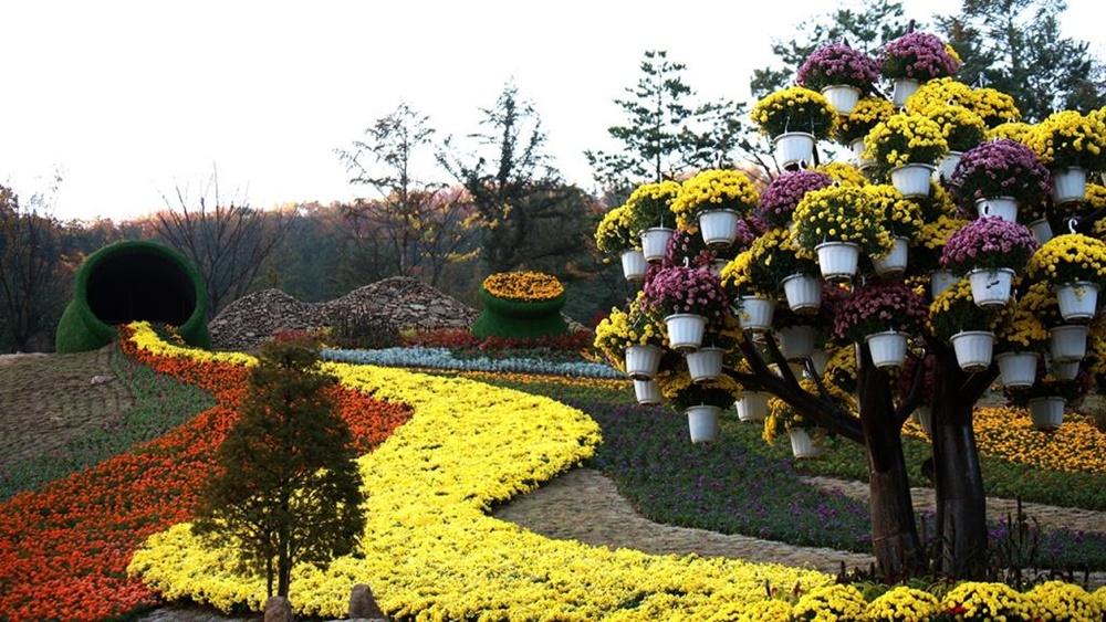 namyangju-mulmalgeum-arboretum