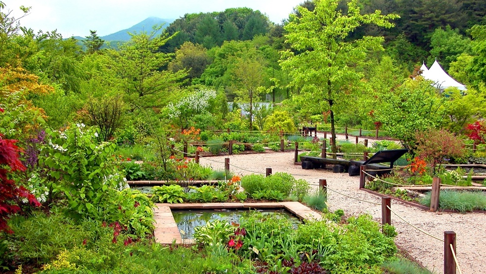pyeonggang-botanical-garden-in-pocheon