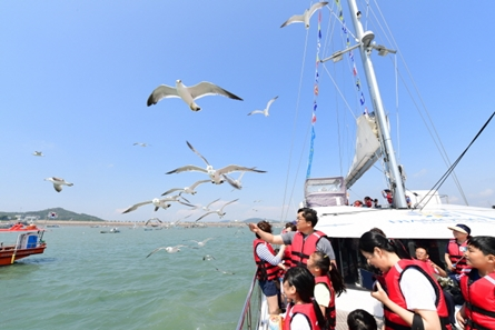 Hwaseong Boating Festival
