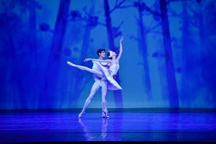 Suwon Ballet Festival