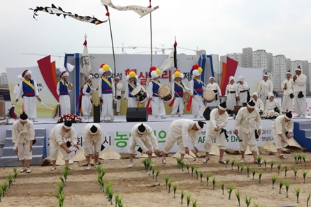Hwaseong Haetsaldri Festival