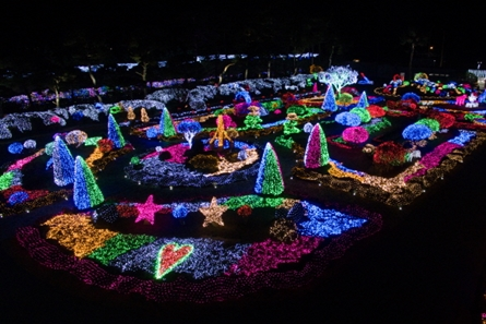 Byeokchoji Botanical Garden Lighting Festival – The Land of Mirror's Light Festival 2019